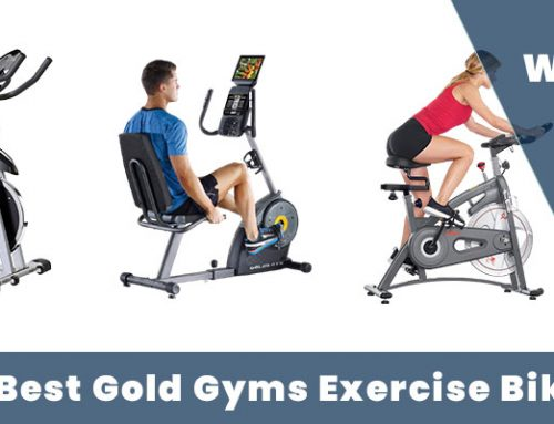 Top 8 Best gold gyms exercise bike – Pain Accessories