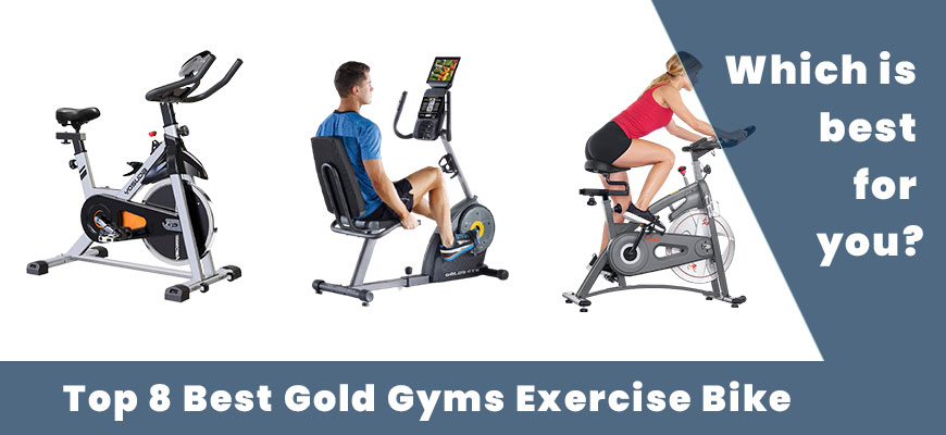 Gold Gyms Exercise Bike